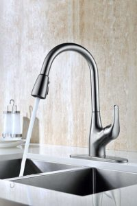 Purelux Tulip Kitchen Faucet review