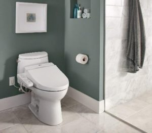 Best Bidet Toilet Seats in 2020 – Reviews and Buyer's Guide