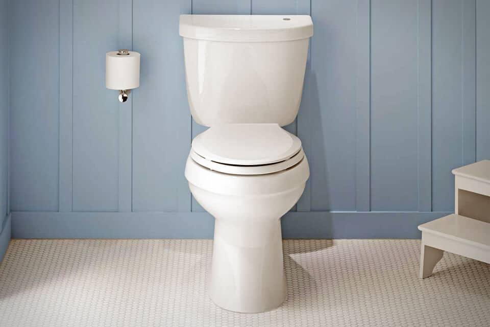 KOHLER K-3615-0 Gabrielle Toilet Review